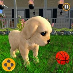Virtual Pet Puppy Simulator 3D