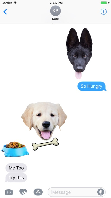 Dogs - Dog Stickers Messages