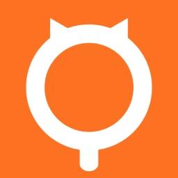 猫村-有爱的宠物猫咪社区