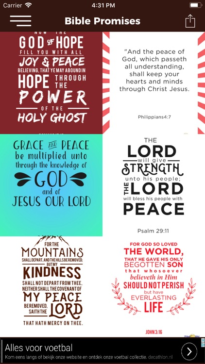 Bible Promises - God's Promise screenshot-3