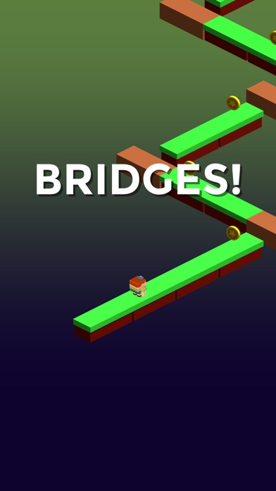 Bridges Connector screenshot #1