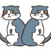 猫のまちがいさがし - iPadアプリ