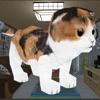 MyLittleCat - 猫シミュレーションゲーム
