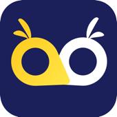 OWL VPN: Connect & Hide Online