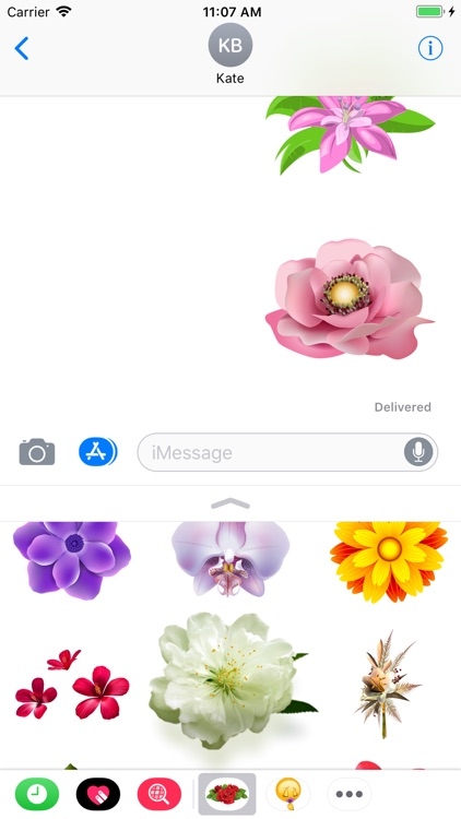 Flowers Collection Stickers screenshot-4