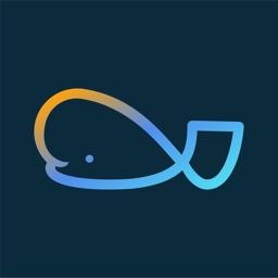 Beluga-smart investing for All