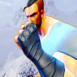 Combat Street Fighter KungFu