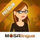 MosaLingua: Learn Languages icon