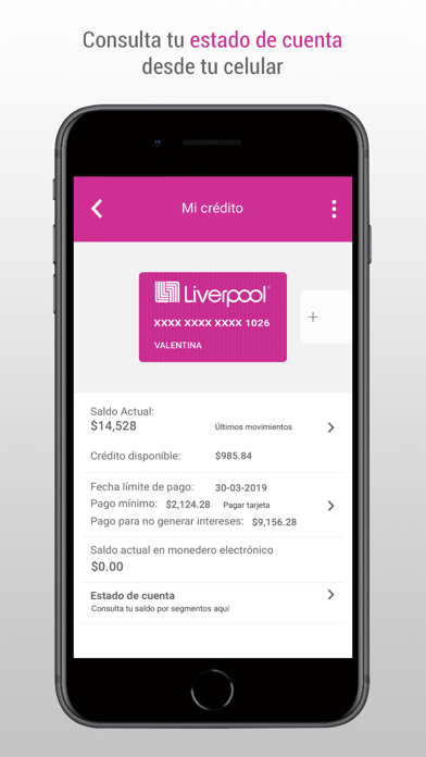 Descargar Liverpool pocket para PC