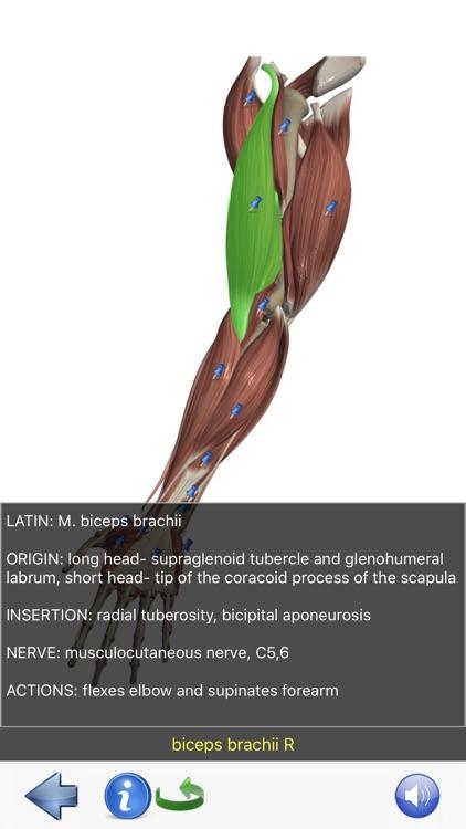 Visual Anatomy Lite screenshot-7