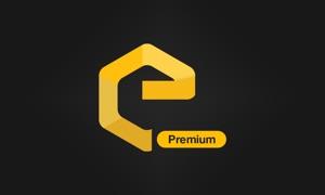 EasyPhoto Premium For Google