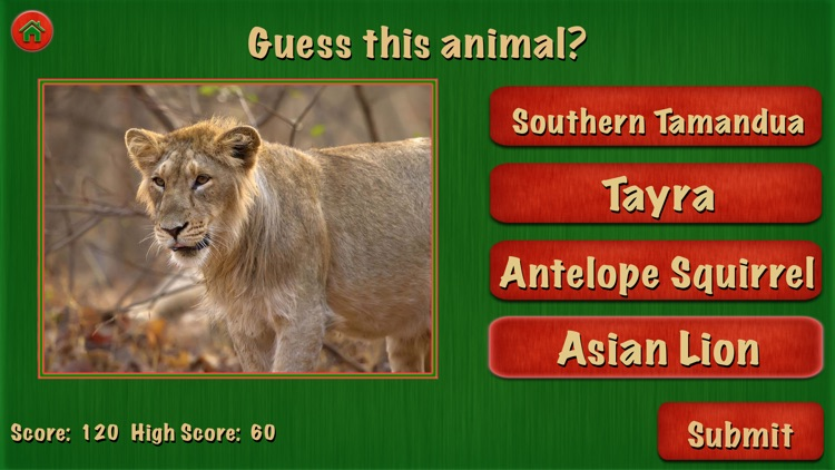 Animal World For Fun screenshot-3