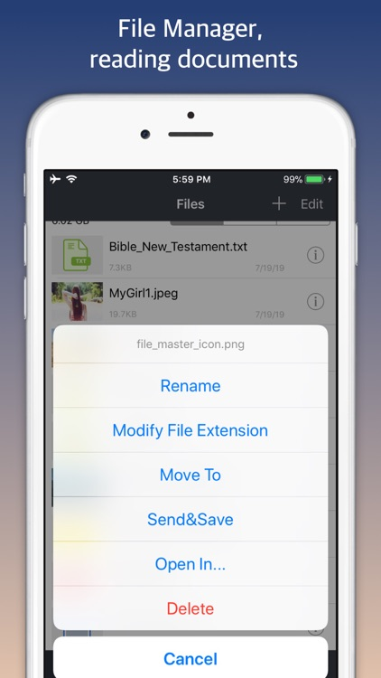 File Master - document manager