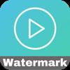 Batch Video Watermark