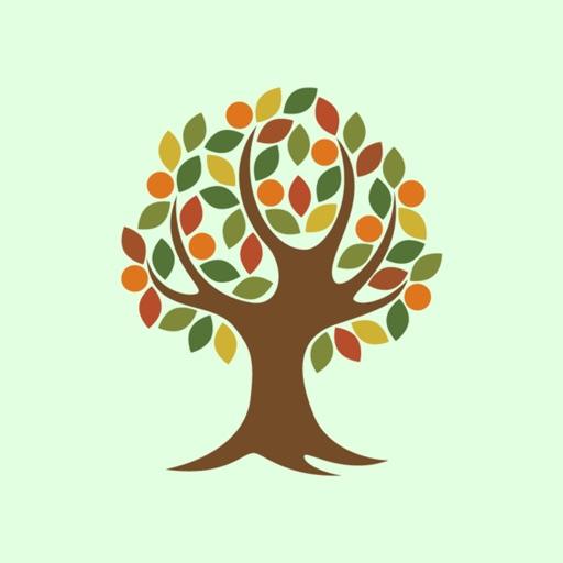 Tree of Life Church