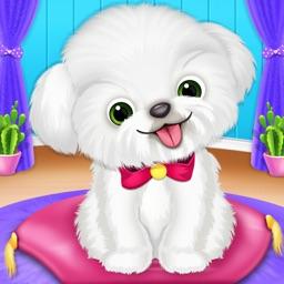 Cute Puppy Pet Daycare
