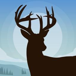 Whitetail Deer Calls for Hunt