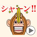 Cymbal monkey/Animated