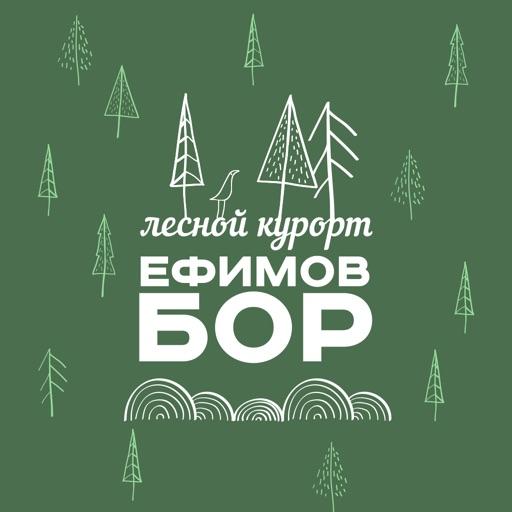 Ефимов Бор