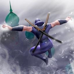 Ninja Samurai Assassin creed