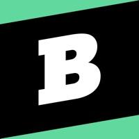 Brainly Homework Help App