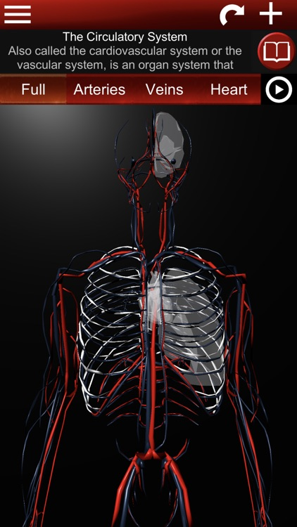 Circulatory System 3D Anatomy screenshot-0