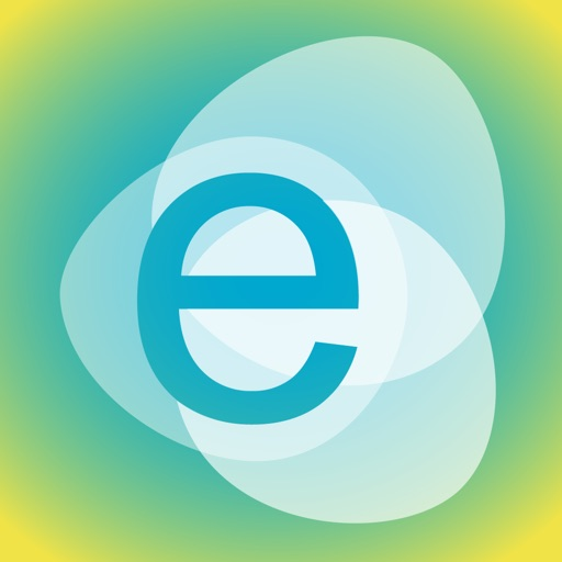 E Codes