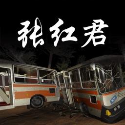 孙美琪疑案:张红君(中国版)