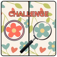 Activities of Five Differences Challenge