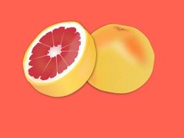 Grapefruit Stickers