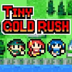 Activities of TinyGOLDRUSH