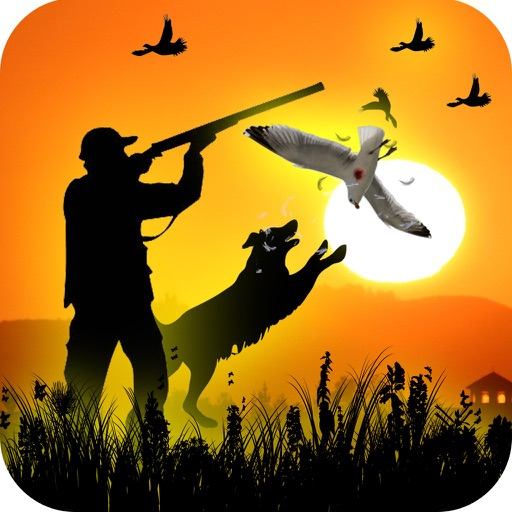 New Birds Hunting Game 3D