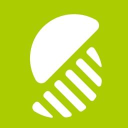 Splitsies App