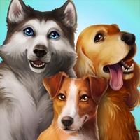 Codes for Dog Hotel Hack