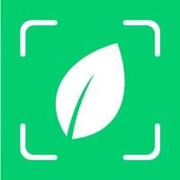 Plantyx Plant Identification