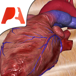 Ícone do app Pocket Heart