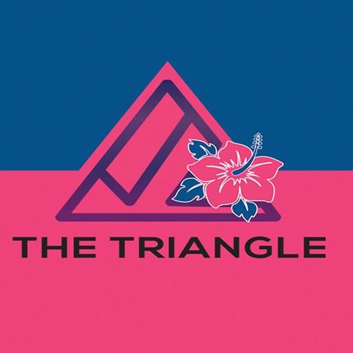 The Triangle Bermuda