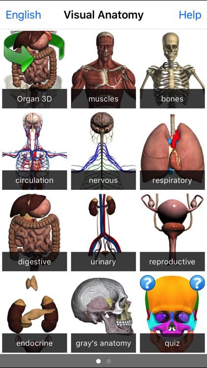 Visual Anatomy screenshot-4