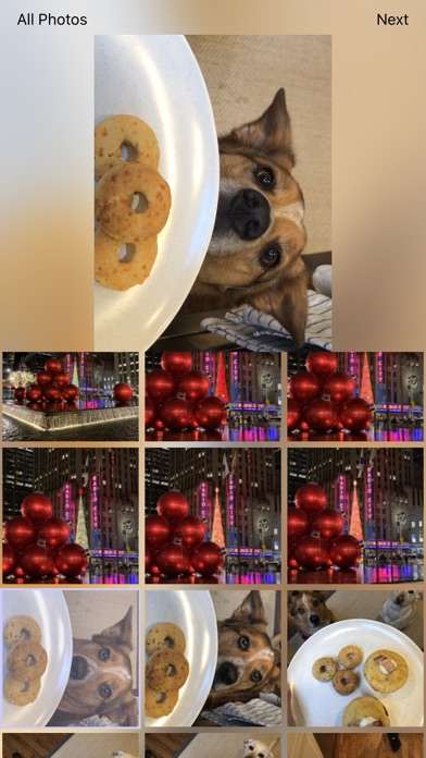 Screenshot for Motion - Live Photos to GIFs in United States App Store