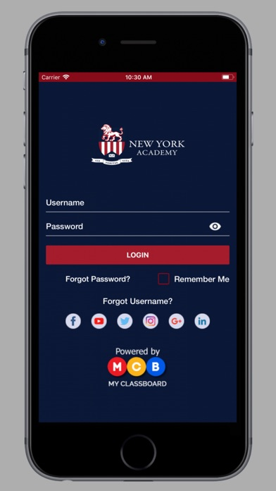 New York Academy screenshot 1
