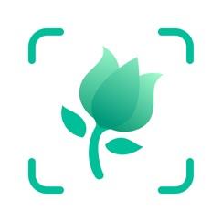 PictureThis-Identifier Plantes télécharger