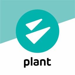 Inavitas Plant