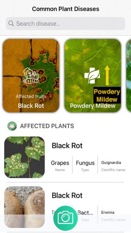 Plants Diseases Identifier screenshot-3