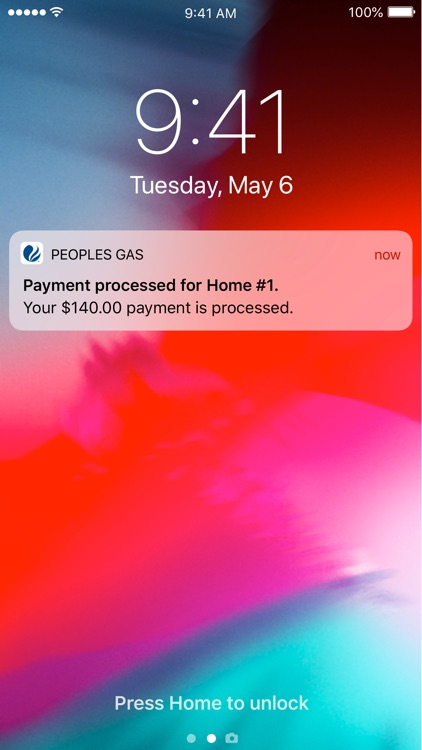 Peoples Gas Chicago screenshot-6