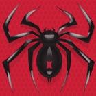 蜘蛛接龙游戏 icon