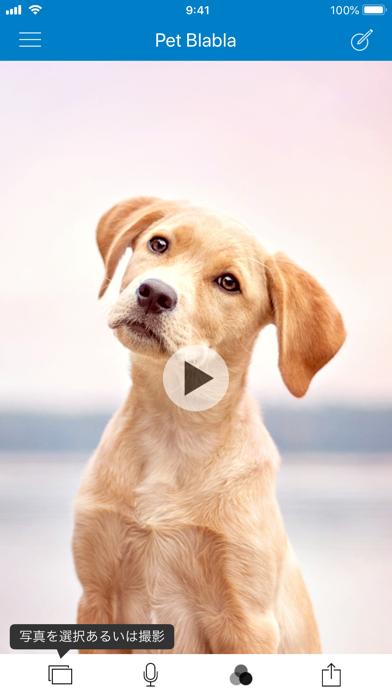 Tractive Pet BlaBlaのおすすめ画像1
