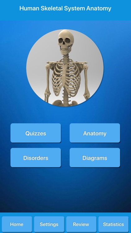 Skeletal System Anatomy screenshot-0