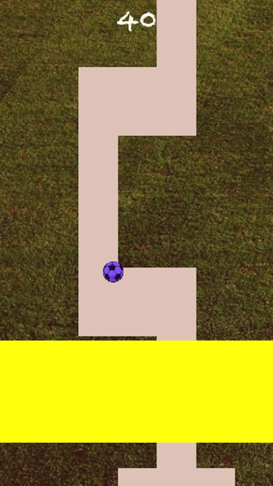 Line Roll~ screenshot 3