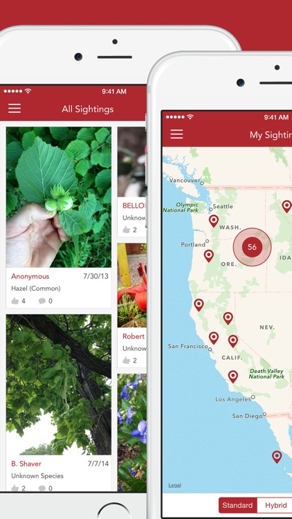 Wild Berries and Herbs 2 PRO screenshot-4