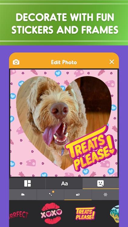 Pet Parade: Cutest Dogs & Cats screenshot-5